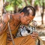 asianman-hugging-big-cat